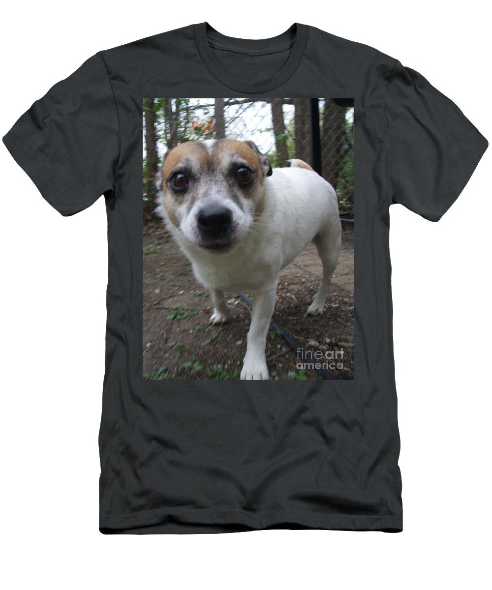 Dog Men's T-Shirt (Athletic Fit) featuring the photograph Curious Jack by Minding My Visions by Adri and Ray
