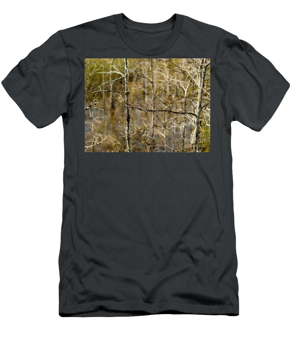 Branches Men's T-Shirt (Athletic Fit) featuring the photograph Cypress Branches by Tracy Knauer