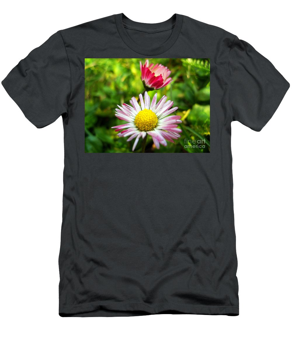 Daisy Men's T-Shirt (Athletic Fit) featuring the photograph Daisies In Januray by Nina Ficur Feenan