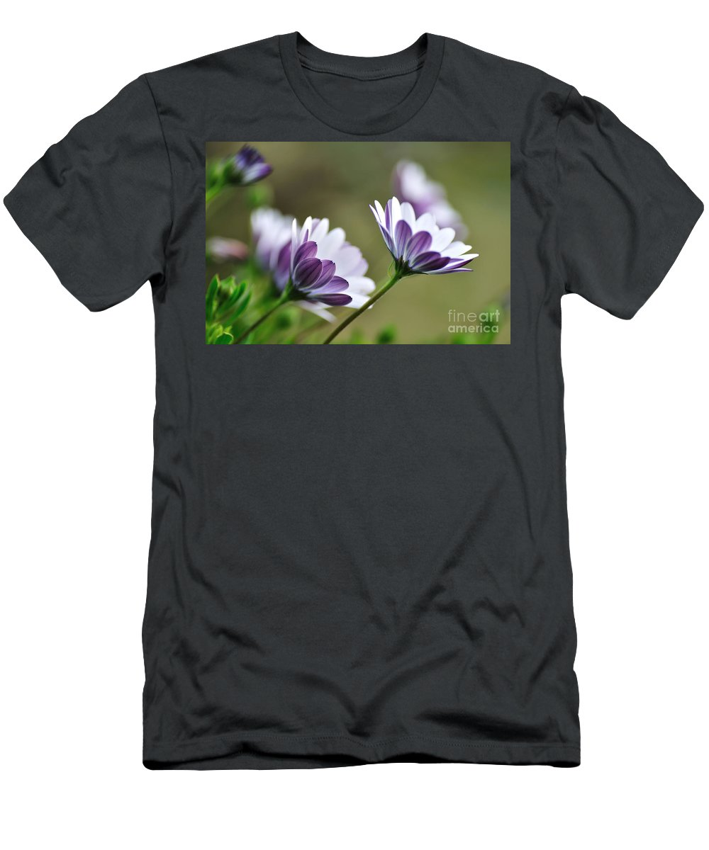 Photography Men's T-Shirt (Athletic Fit) featuring the photograph Daisies Seeking The Sunlight by Kaye Menner