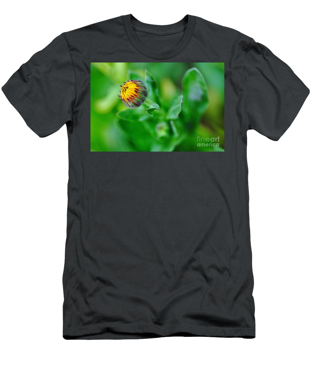 Photography Men's T-Shirt (Athletic Fit) featuring the photograph Daisy Bud Ready To Bloom by Kaye Menner