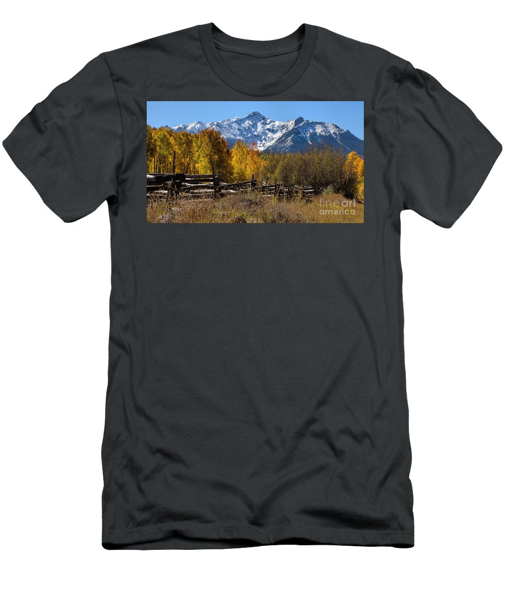 Fall Foliage Men's T-Shirt (Athletic Fit) featuring the photograph Dallas Fenceline by Jim Garrison