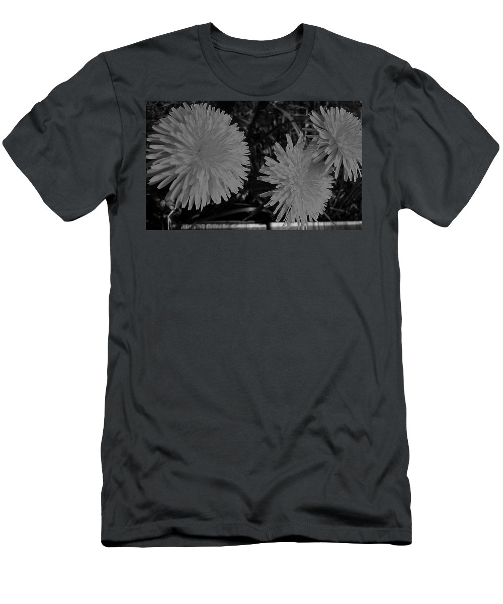 Dandelion Men's T-Shirt (Athletic Fit) featuring the photograph Dandelion Weeds? B/w by Martin Howard