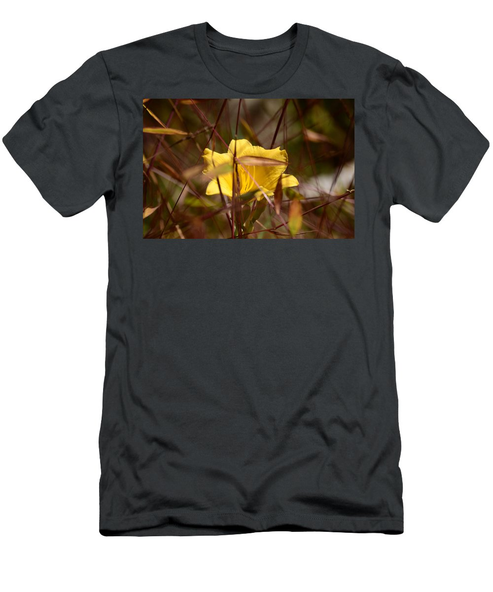 Daylily Men's T-Shirt (Athletic Fit) featuring the photograph Daylily In Autumn by Lori Tambakis
