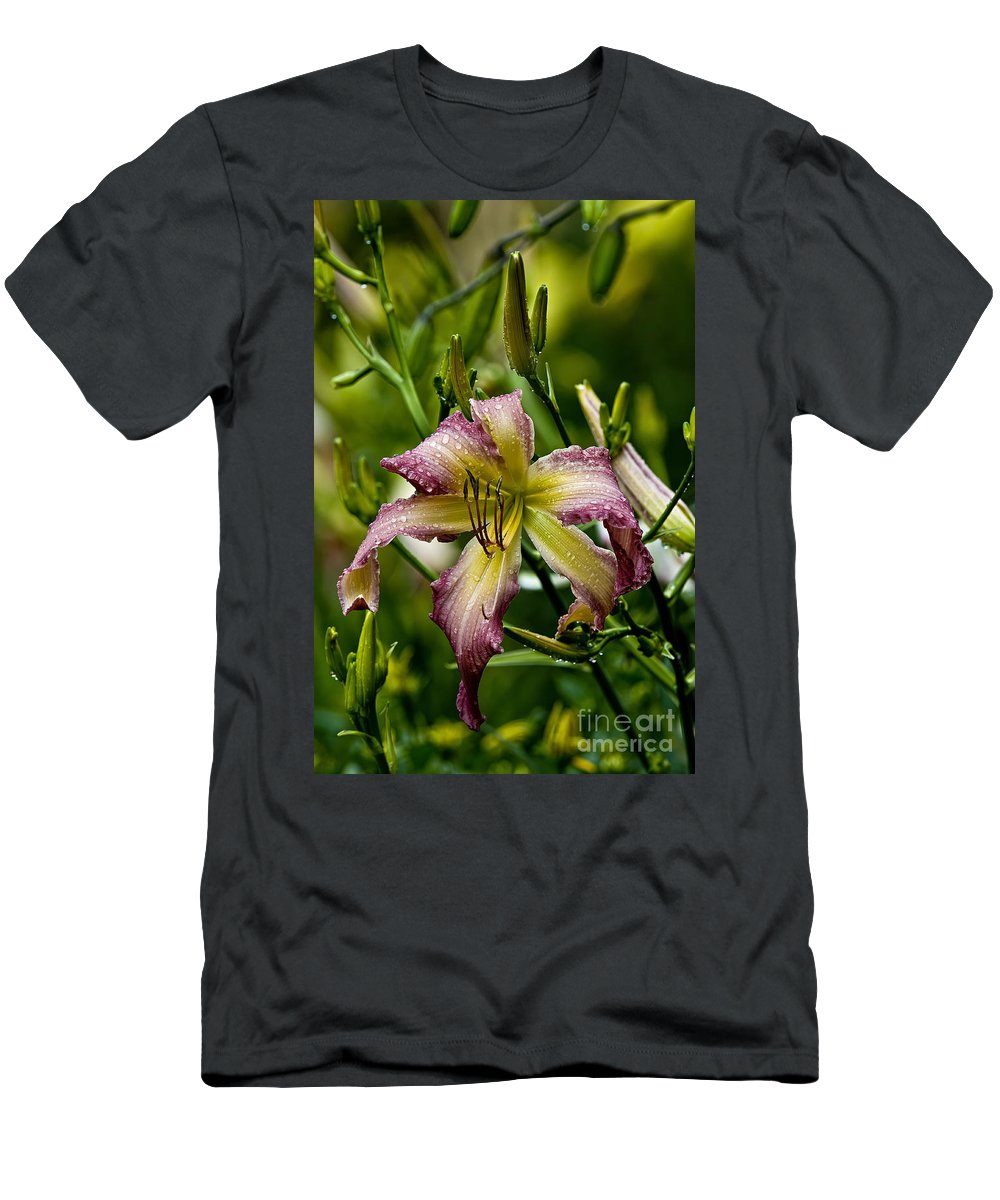 Daylily Men's T-Shirt (Athletic Fit) featuring the photograph Daylily Picture 494 by World Wildlife Photography