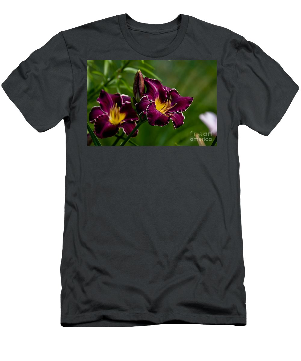 Daylily Men's T-Shirt (Athletic Fit) featuring the photograph Daylily Picture 526 by World Wildlife Photography