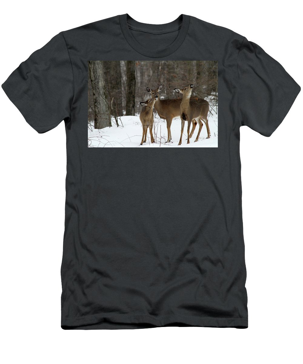 Deer Men's T-Shirt (Athletic Fit) featuring the photograph Deer Affection by Karol Livote