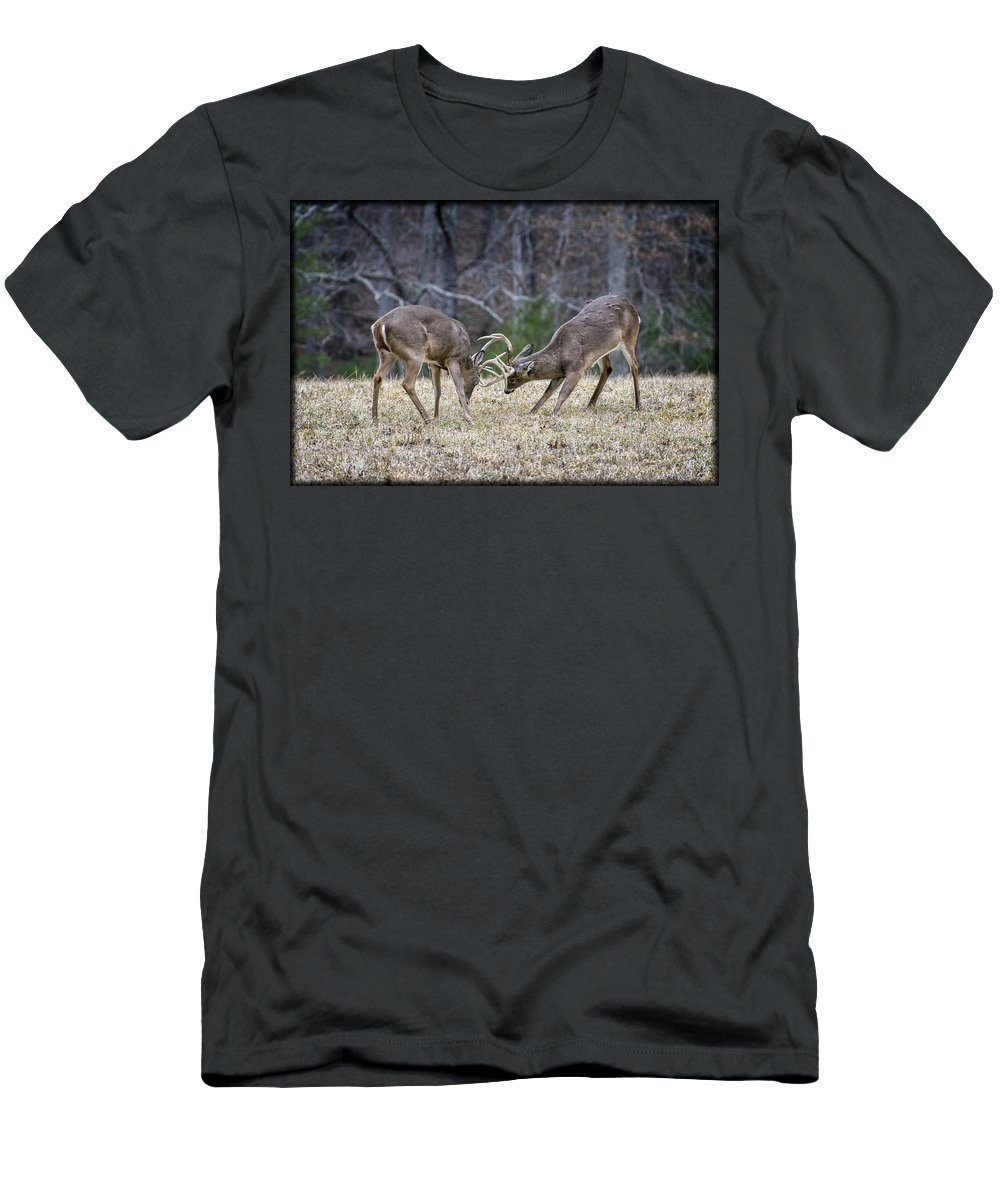 Deer Men's T-Shirt (Athletic Fit) featuring the photograph Deer Discussion E167 by Wendell Franks