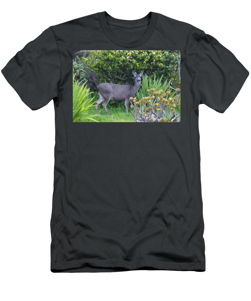 Barbara Snyder Men's T-Shirt (Athletic Fit) featuring the digital art Deer II by Barbara Snyder