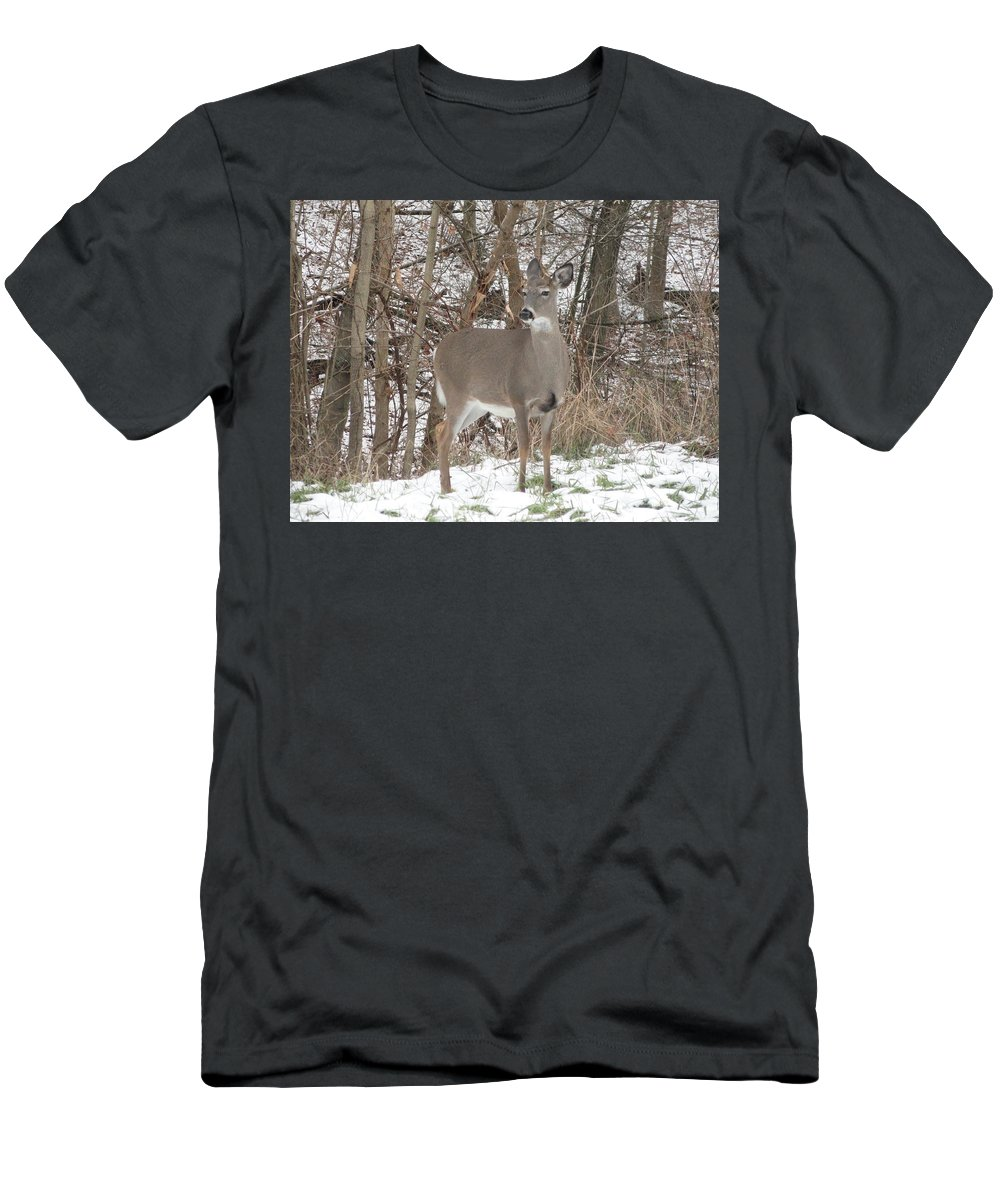 Deer Men's T-Shirt (Athletic Fit) featuring the photograph Deer Of Beauty by Stephanie Irvin