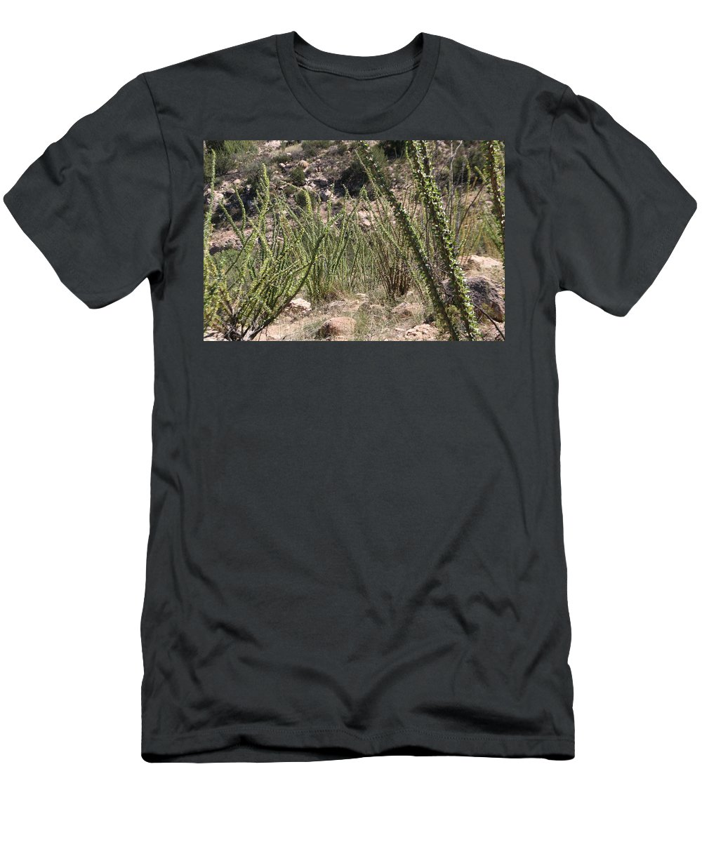 Ocotillo Men's T-Shirt (Athletic Fit) featuring the photograph Desert Forest by David S Reynolds