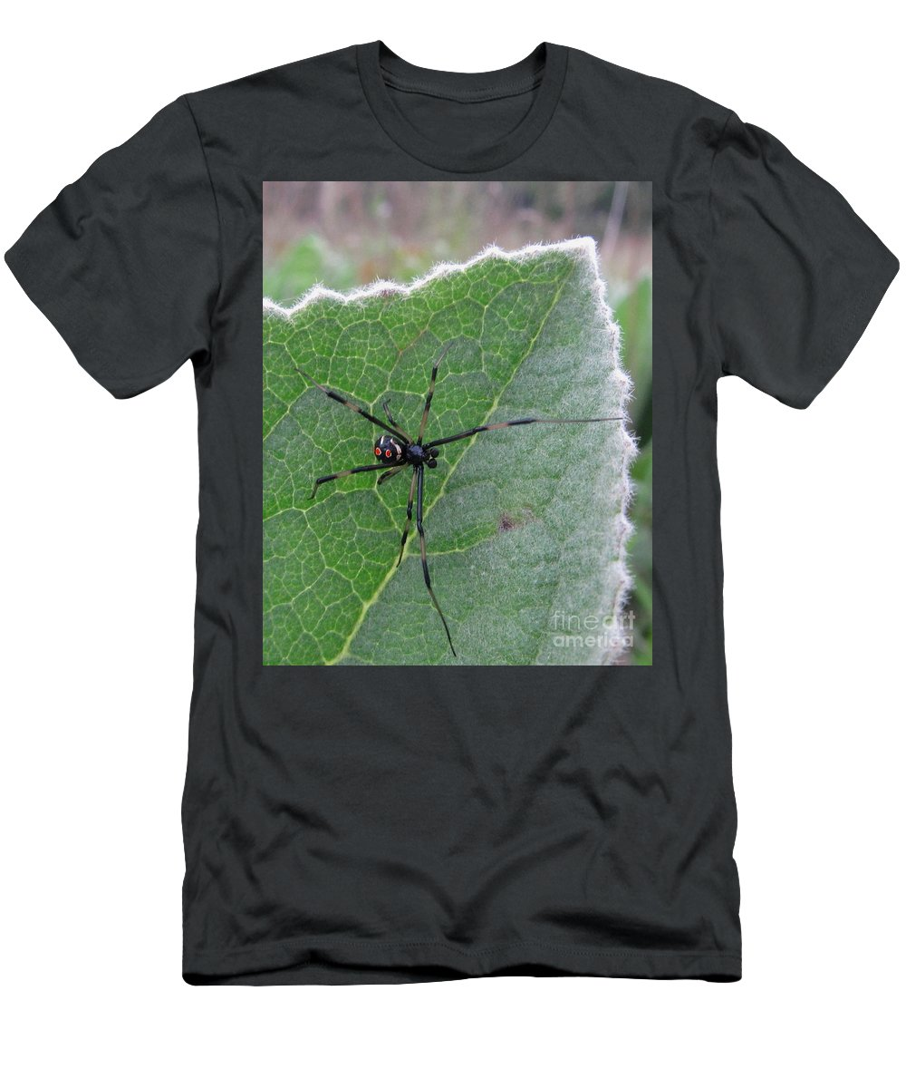 Maryland Black Widow Deadly North American Spiders Diurnal Black Widow Images Chesapeake Bay Region Black Widow Spider Images Forest Creatures Venomous Creatures Killer Critters Black Red Yellow Arachnid Creepy Critters Men's T-Shirt (Athletic Fit) featuring the photograph Diurnal Doom by Joshua Bales