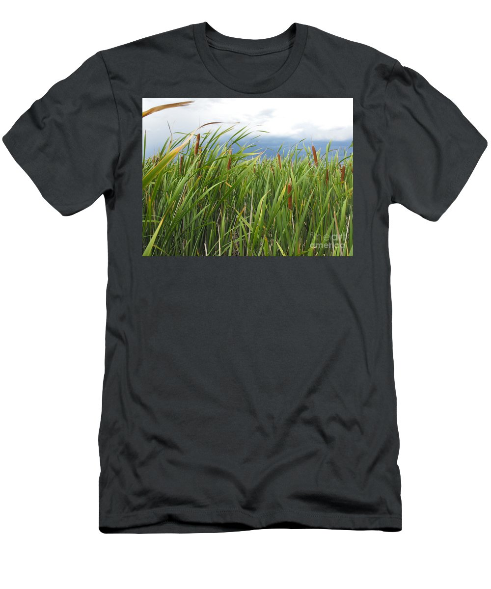 Cattails Men's T-Shirt (Athletic Fit) featuring the photograph Dobie Swamp Tails by Brandi Maher