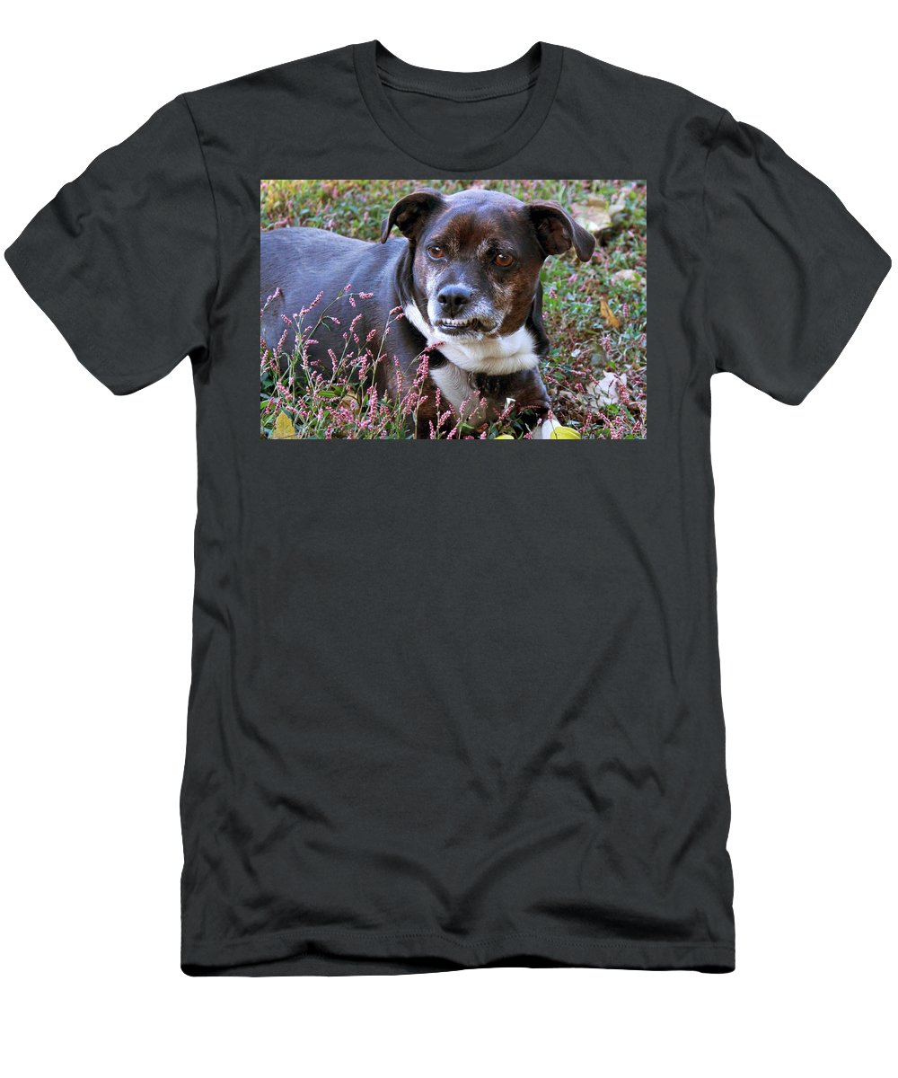 Dog Men's T-Shirt (Athletic Fit) featuring the photograph Dogg by Bonnie Willis