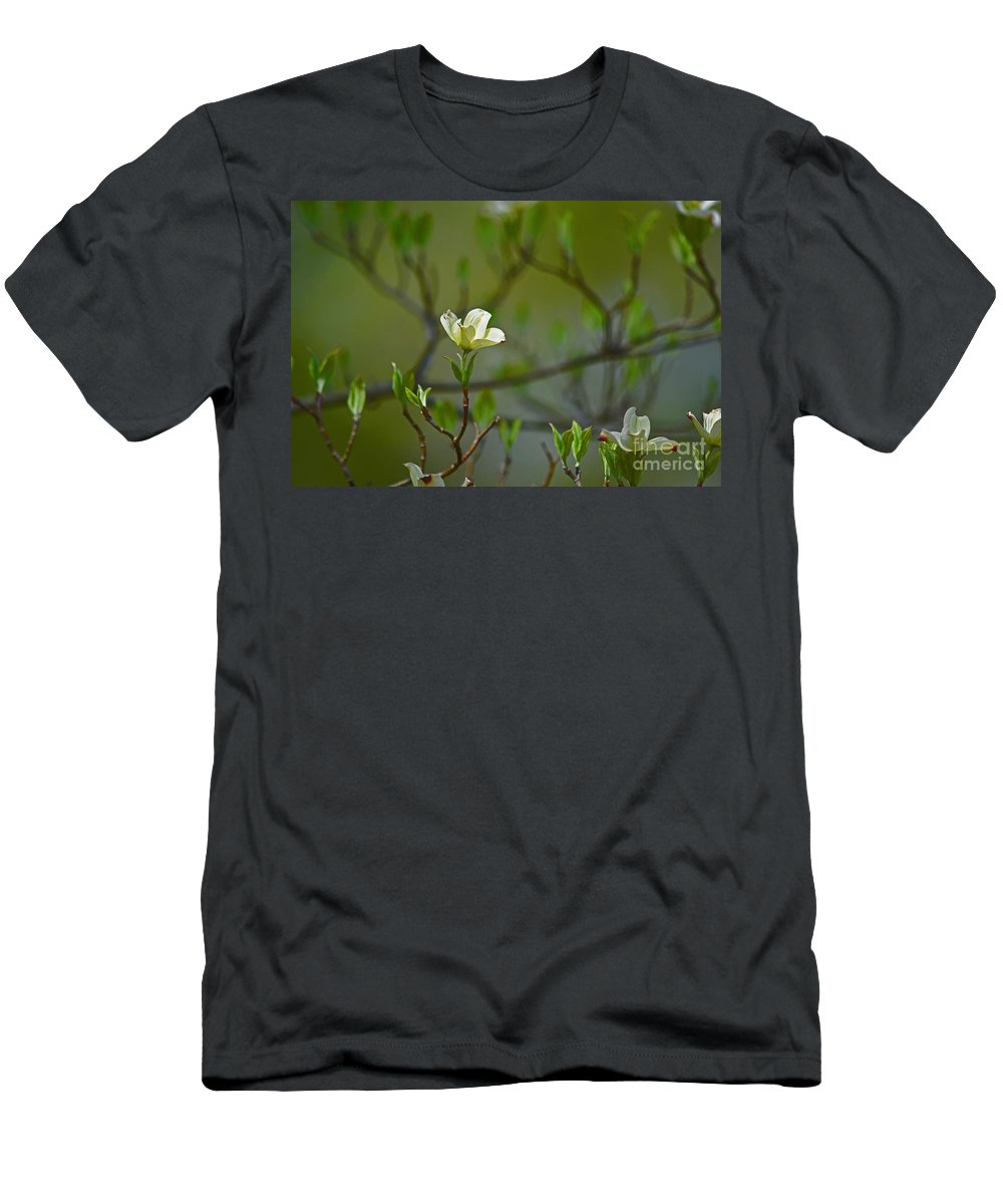 Dogwood Men's T-Shirt (Athletic Fit) featuring the photograph Dogwood II by Karin Everhart