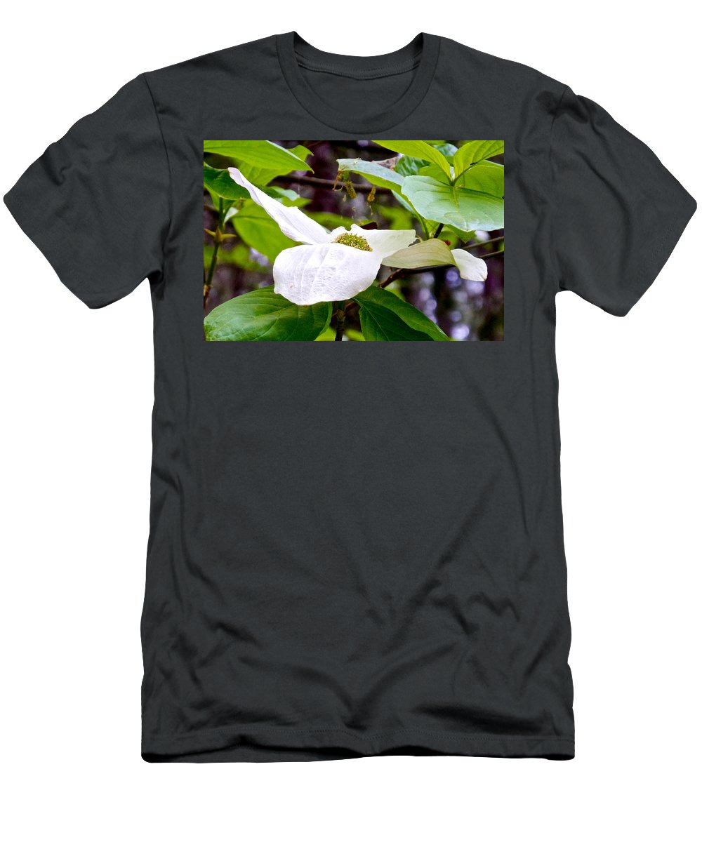 Dogwood Men's T-Shirt (Athletic Fit) featuring the photograph Dogwood In Yosemite Valley-2013 by Ruth Hager