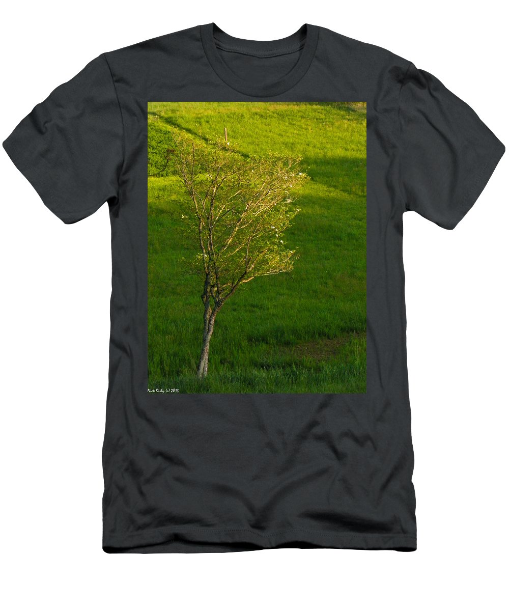 Dogwood Men's T-Shirt (Athletic Fit) featuring the photograph Dogwood by Nick Kirby