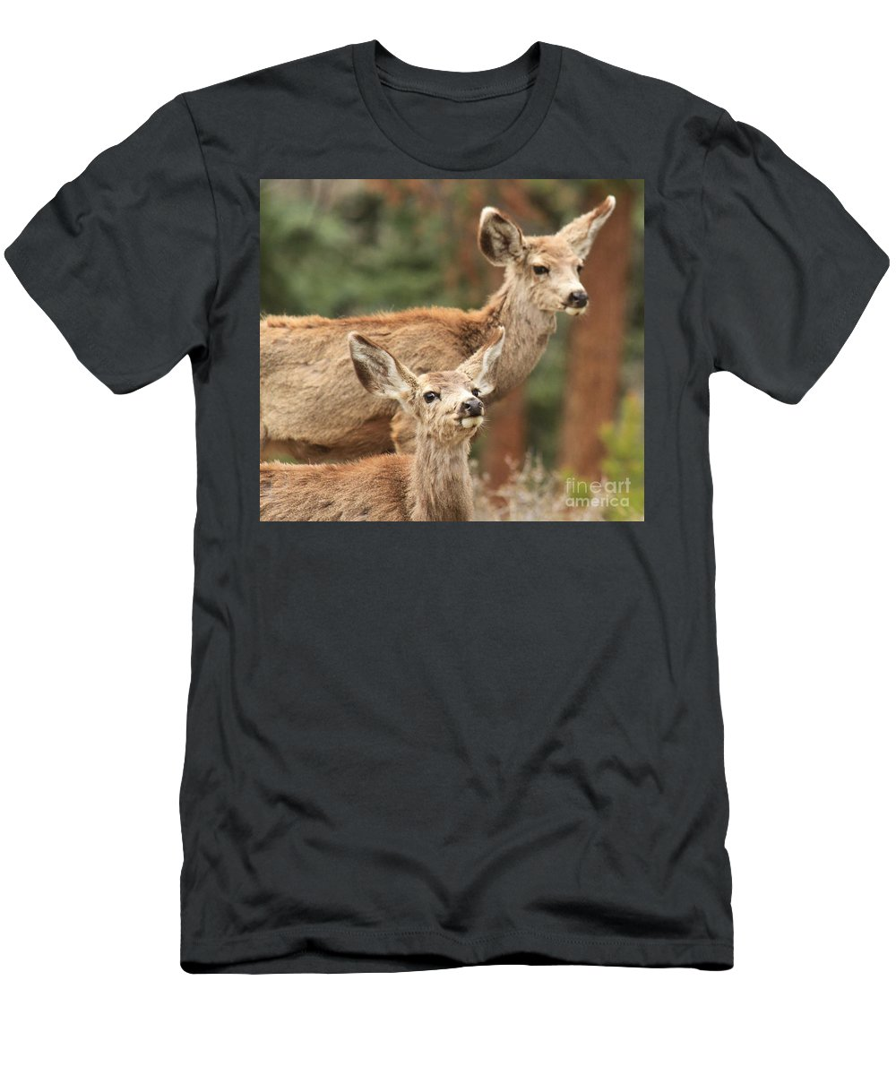 Rocky Mountain National Park Men's T-Shirt (Athletic Fit) featuring the photograph Don't You Tell Mom by Adam Jewell