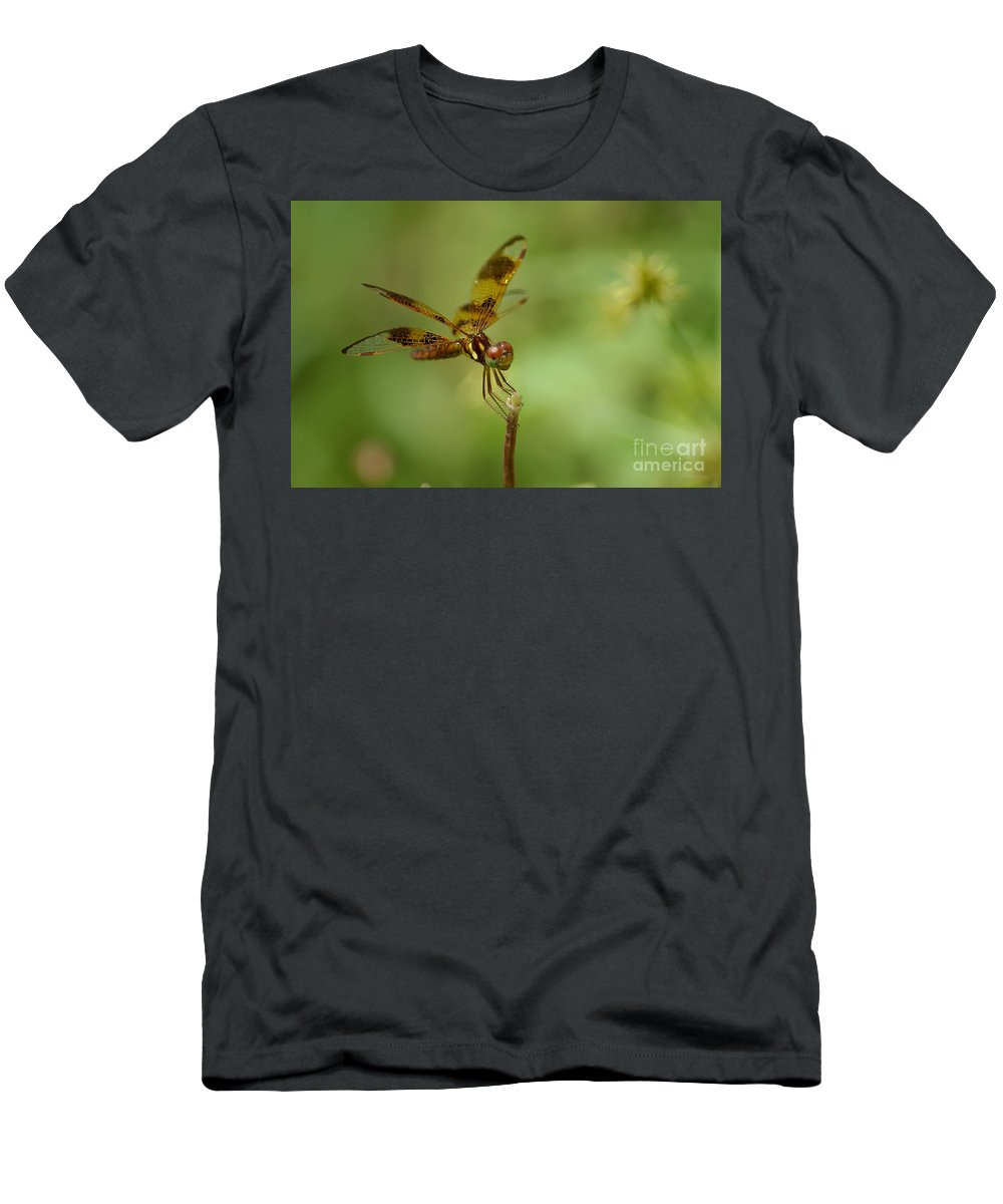 Dragonfly Men's T-Shirt (Athletic Fit) featuring the photograph Dragonfly 2 by Olga Hamilton