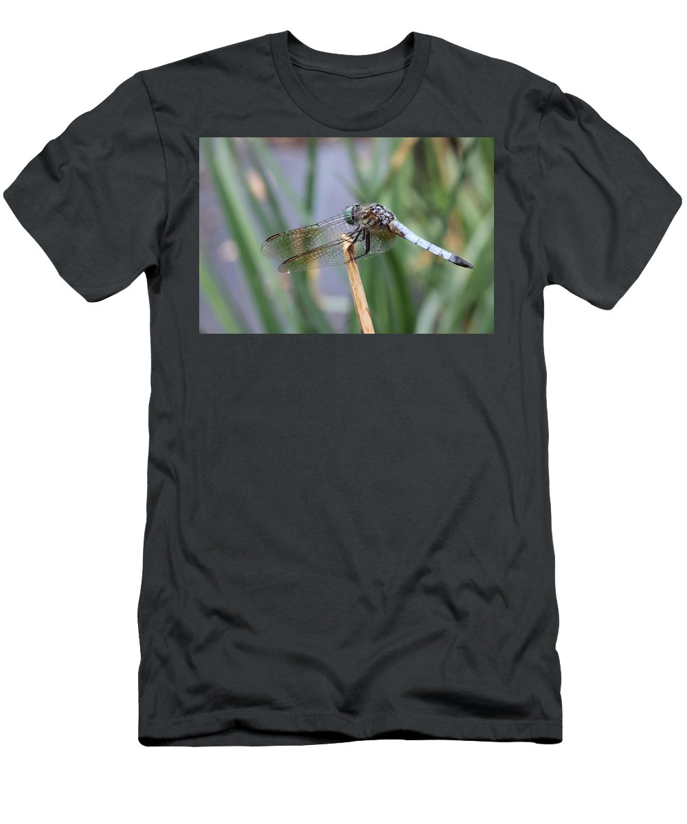 Dragonfly Men's T-Shirt (Athletic Fit) featuring the photograph Dragonfly by Adrienne Franklin