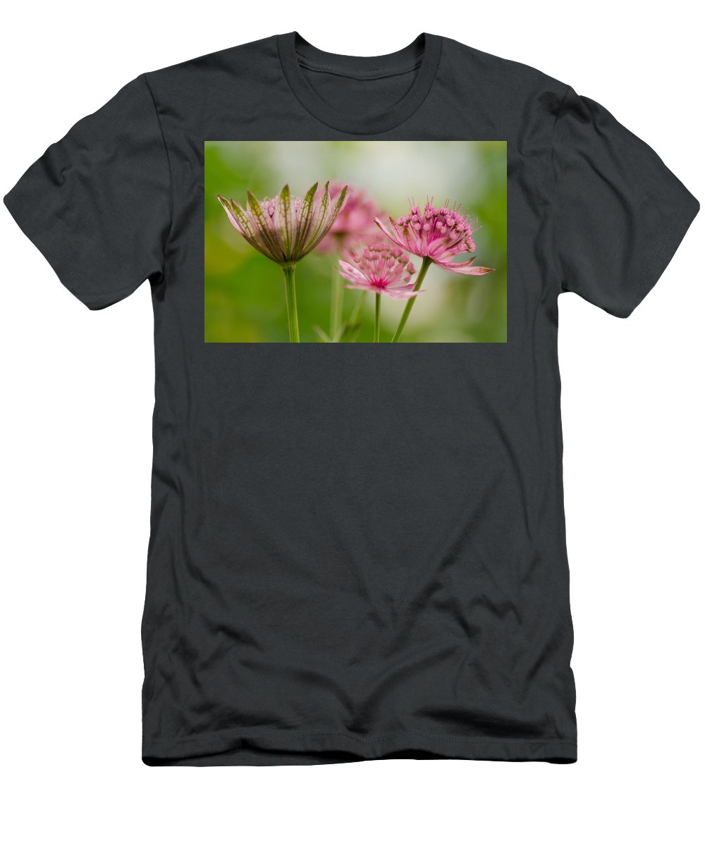 Background Men's T-Shirt (Athletic Fit) featuring the photograph Dreamy by TouTouke A Y
