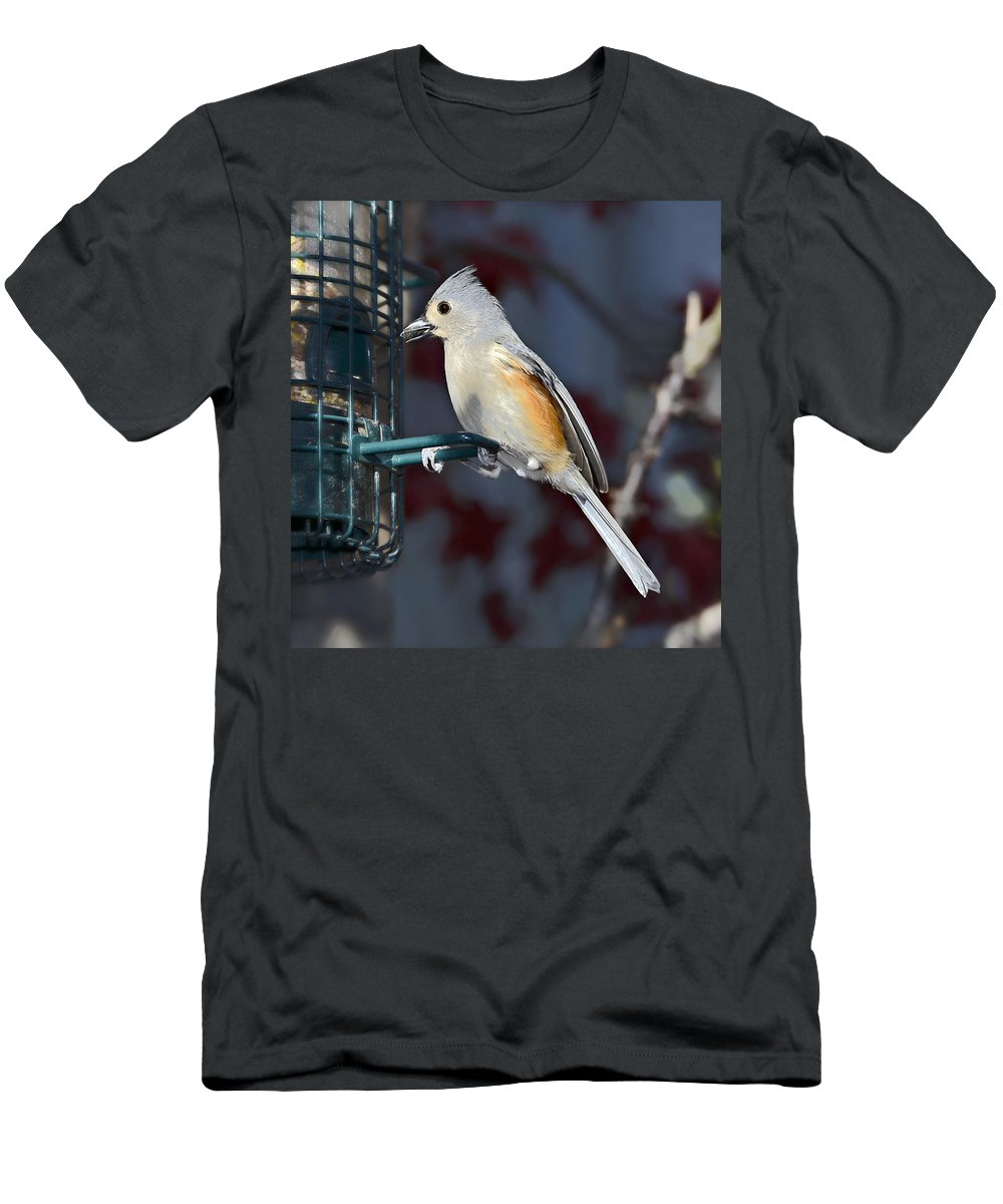 Avian Men's T-Shirt (Athletic Fit) featuring the photograph Early Evening Snack by Susan Leggett