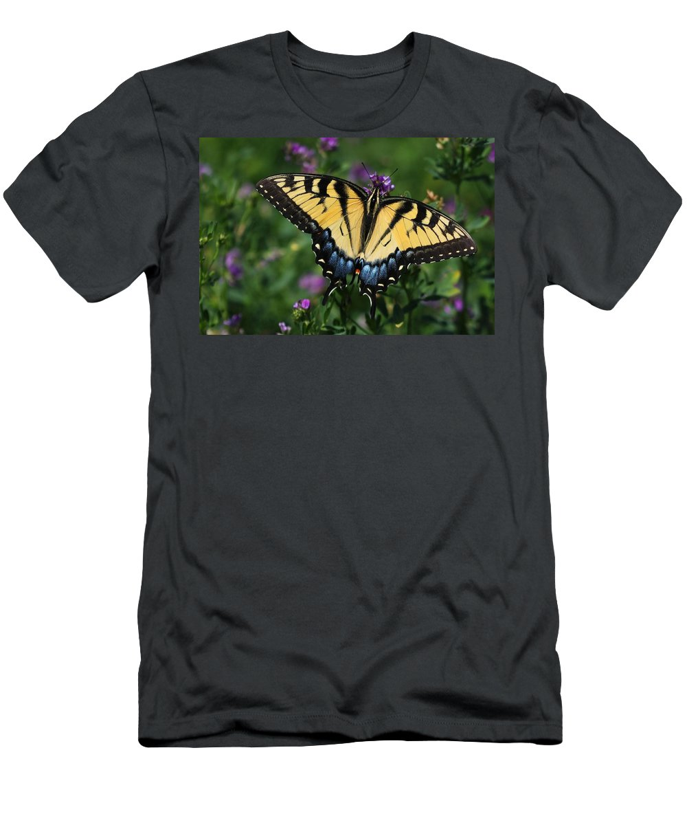 Butterfly Men's T-Shirt (Athletic Fit) featuring the photograph Eastern Tiger Swallowtail by Jayne Gulbrand