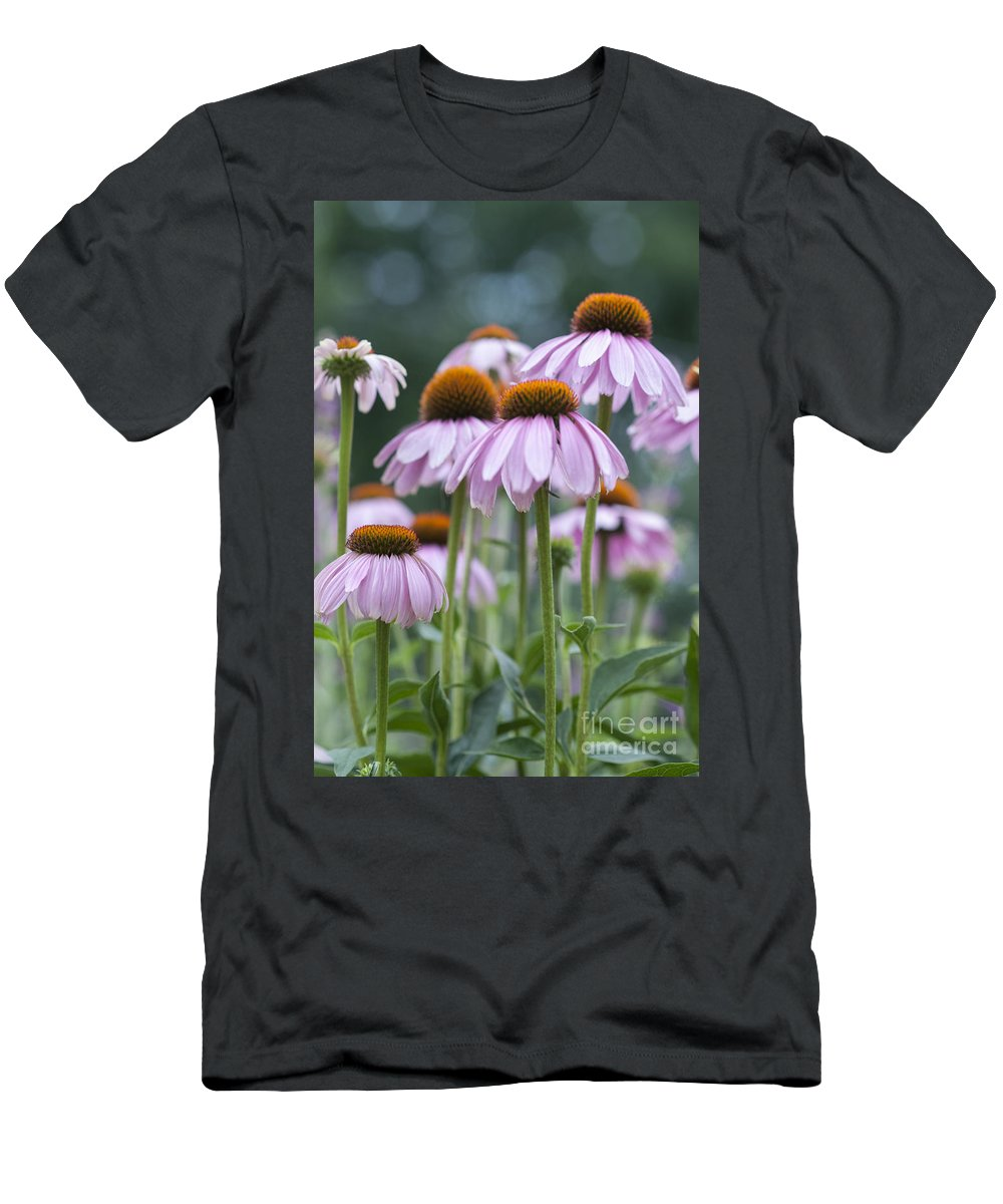 Beauty In Nature Men's T-Shirt (Athletic Fit) featuring the photograph Echinacea Purpurea by Juli Scalzi