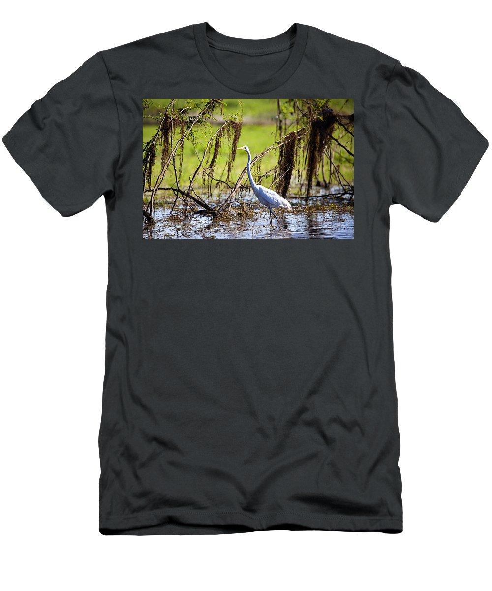 Egret Men's T-Shirt (Athletic Fit) featuring the photograph Egret At Corroborree Billabong by Douglas Barnard