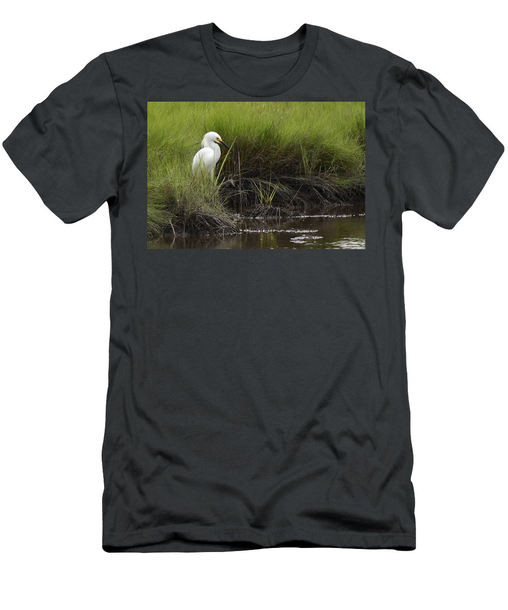 Egret Men's T-Shirt (Athletic Fit) featuring the photograph Egret by Terry DeLuco