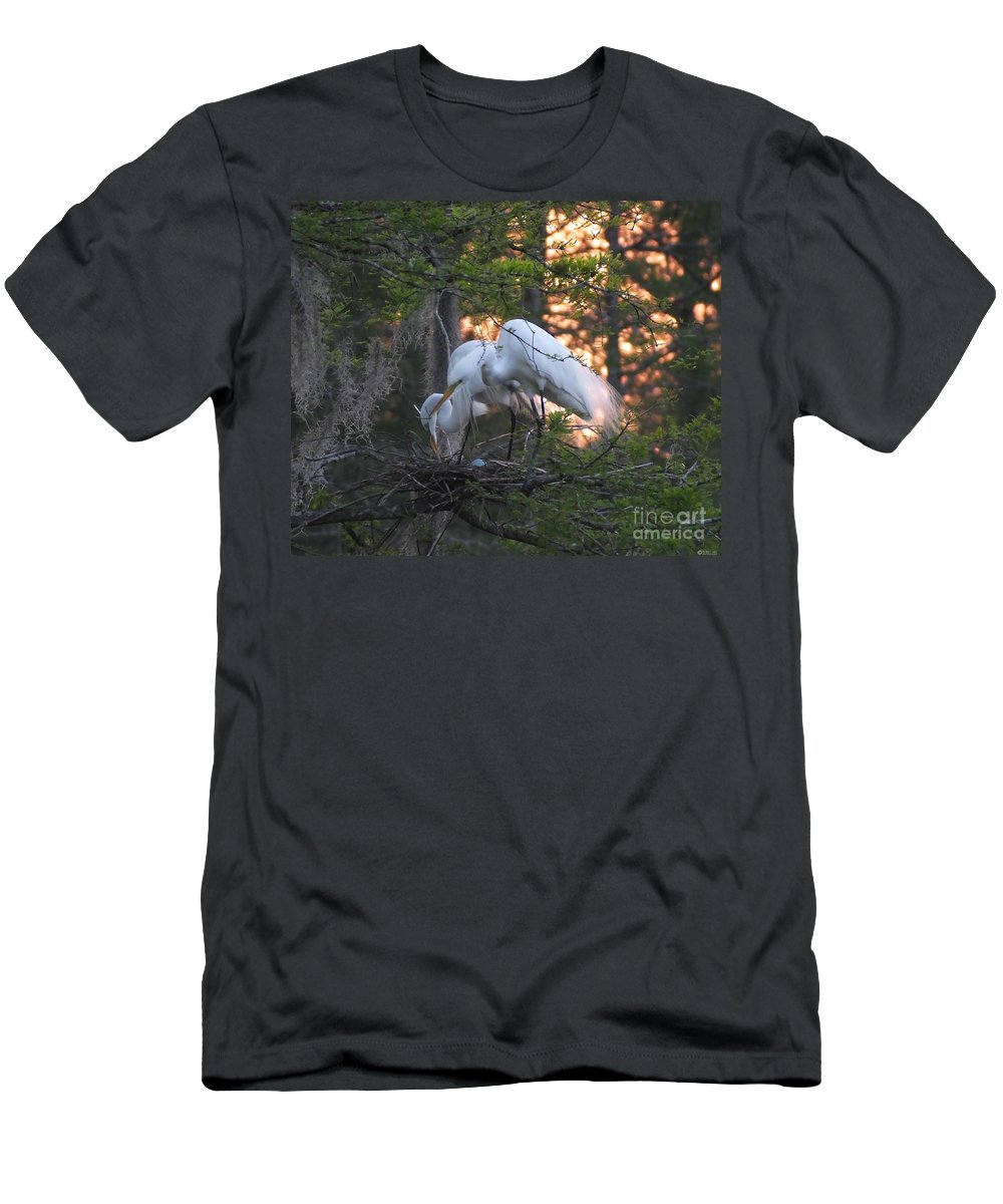 Rookery Men's T-Shirt (Athletic Fit) featuring the photograph Egrets At Nest by Lizi Beard-Ward