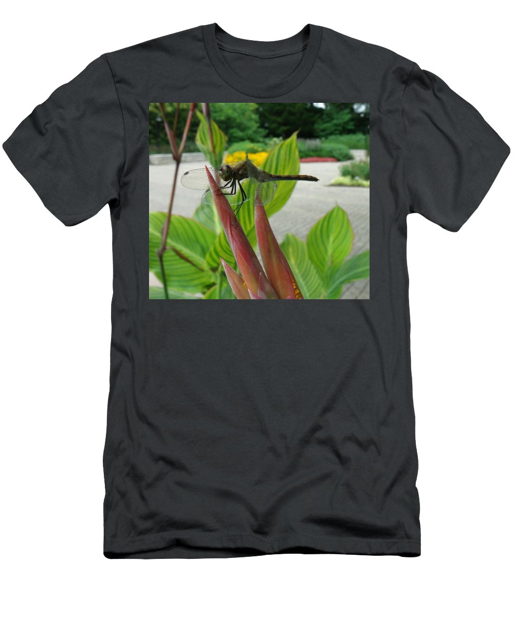 Dragonfly Men's T-Shirt (Athletic Fit) featuring the photograph Elmo by Erin Rednour