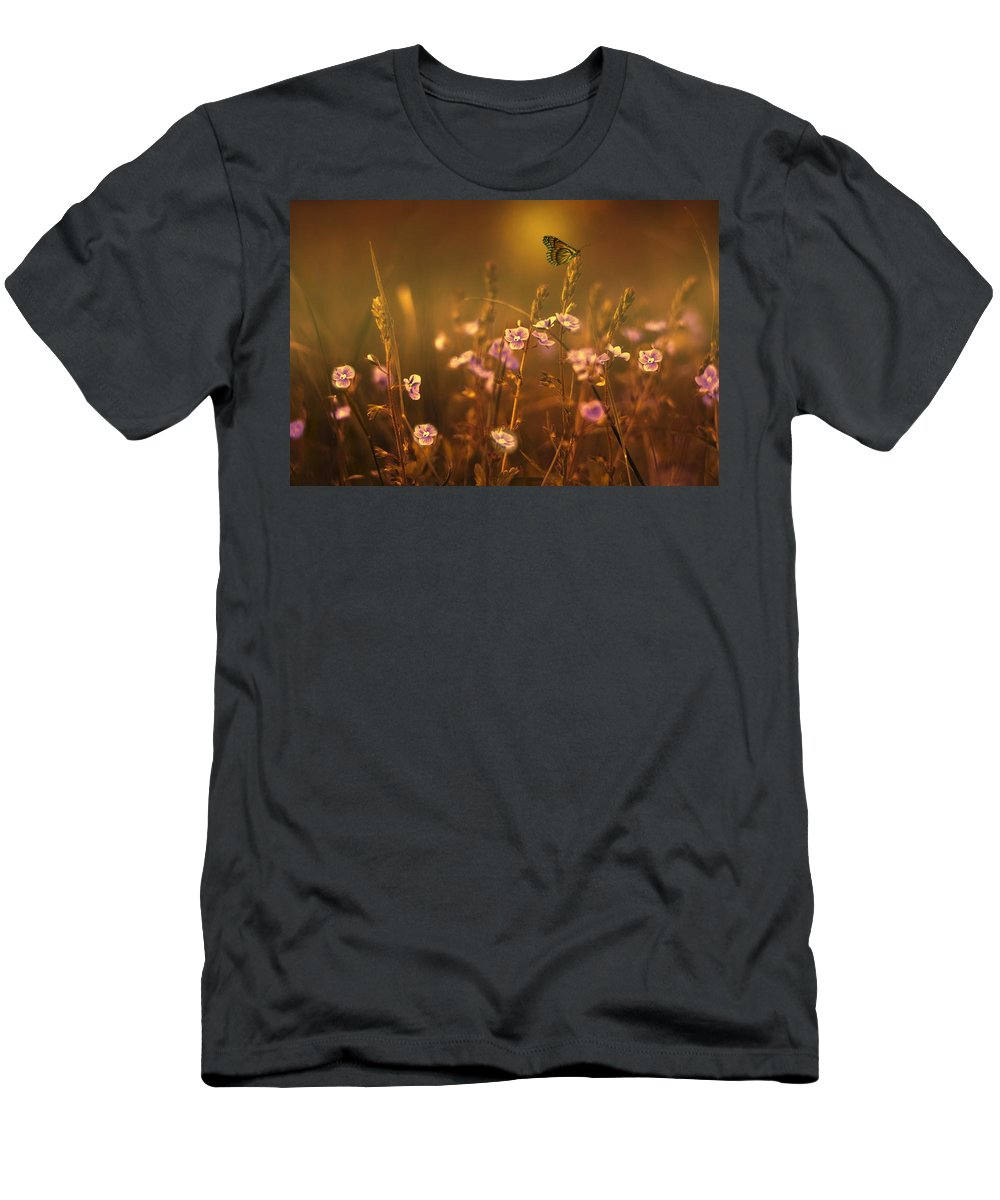 Butterfly Men's T-Shirt (Athletic Fit) featuring the photograph Evening Magic by Movie Poster Prints