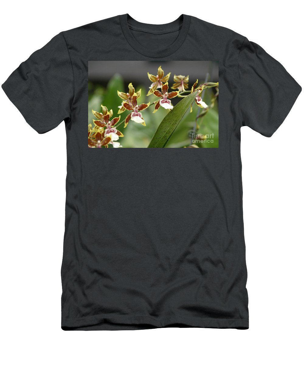 Orchids Men's T-Shirt (Athletic Fit) featuring the photograph Exotic by Living Color Photography Lorraine Lynch
