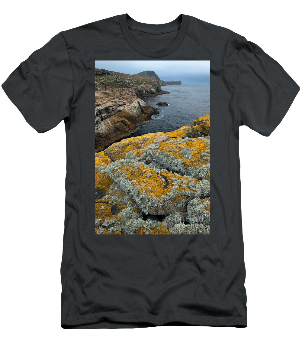 Lichen Men's T-Shirt (Athletic Fit) featuring the photograph Falkland Islands by John Shaw
