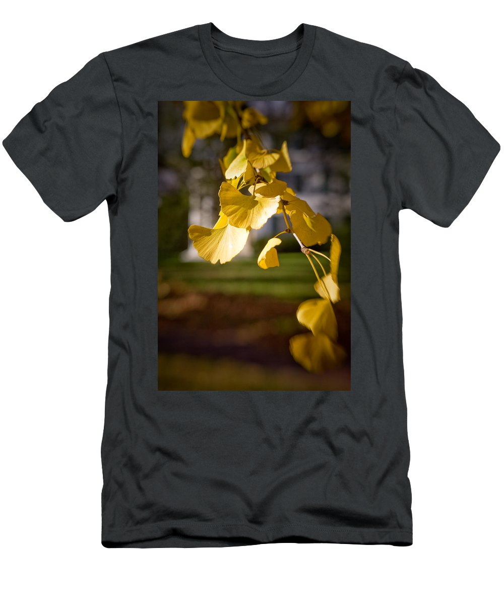 Color Men's T-Shirt (Athletic Fit) featuring the photograph Fall Colors 6737 by Timothy Bischoff
