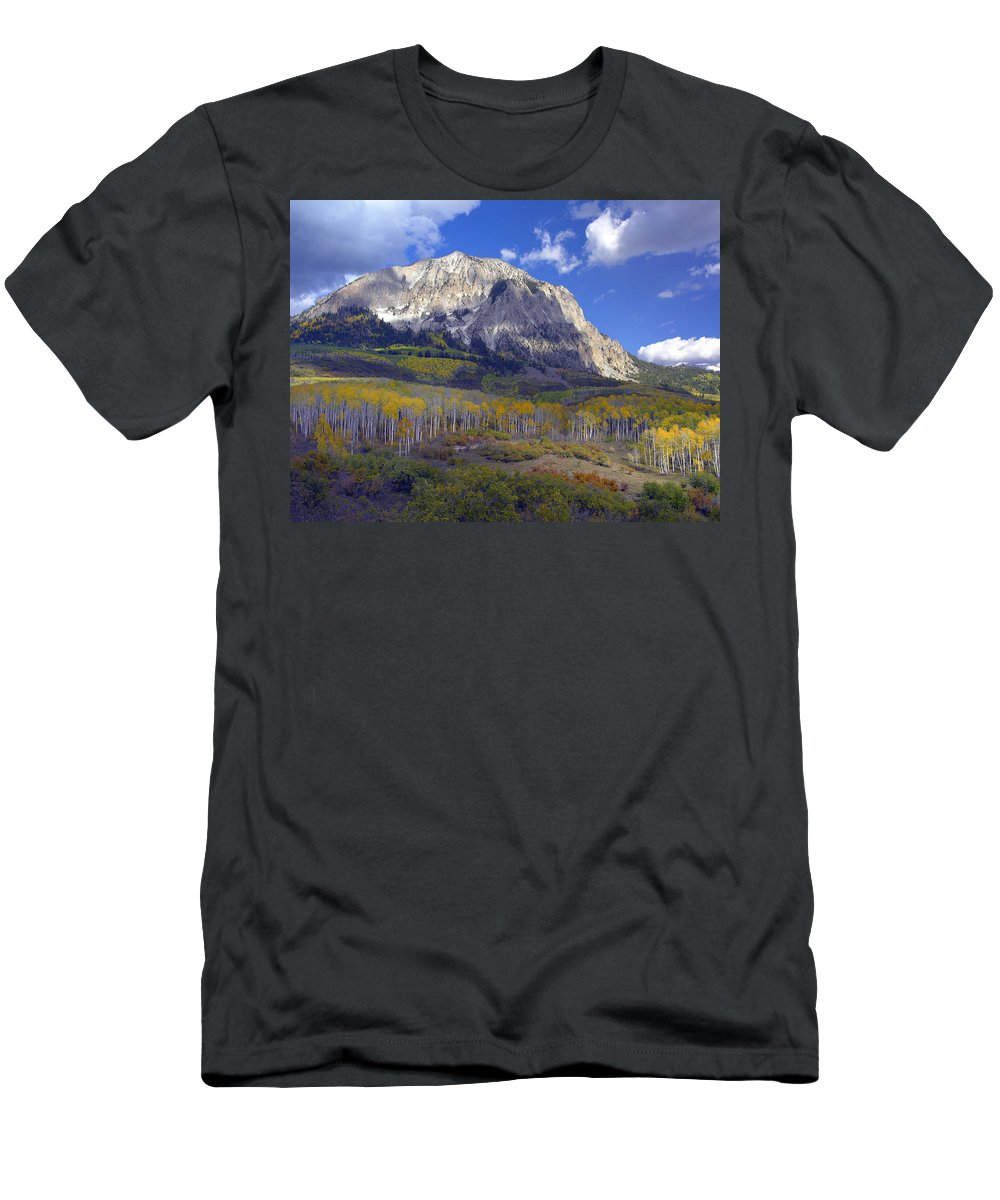 Feb0514 Men's T-Shirt (Athletic Fit) featuring the photograph Fall Colors At Gunnison National Forest by Tim Fitzharris
