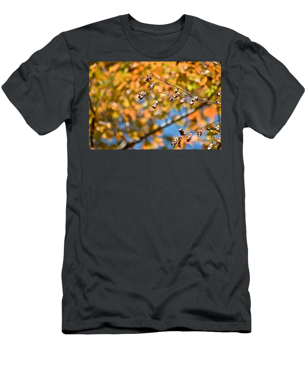 Men's T-Shirt (Athletic Fit) featuring the photograph Fall Foliage by Cheryl Baxter