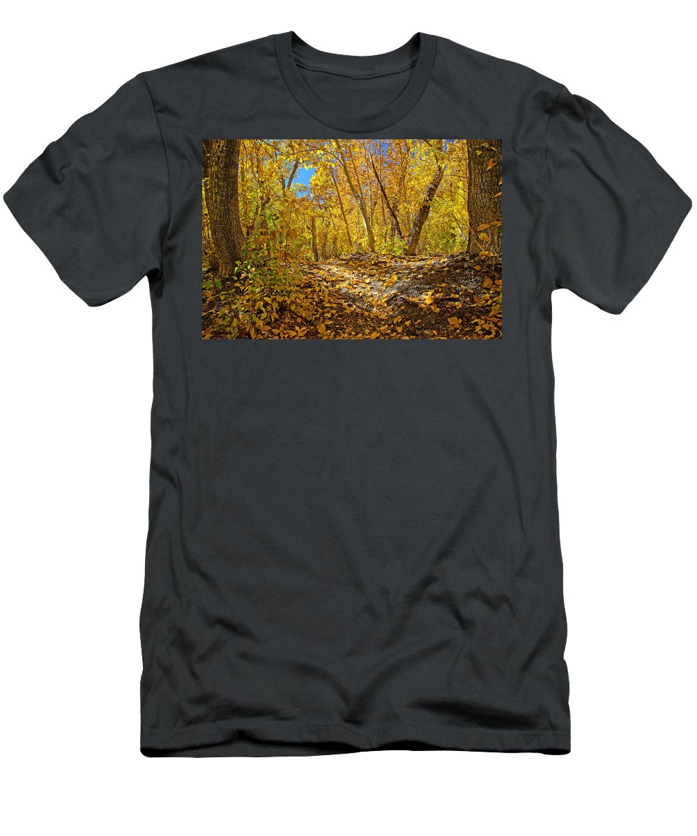 Fall Men's T-Shirt (Athletic Fit) featuring the photograph Fall On The Forest Floor by Lynn Bauer