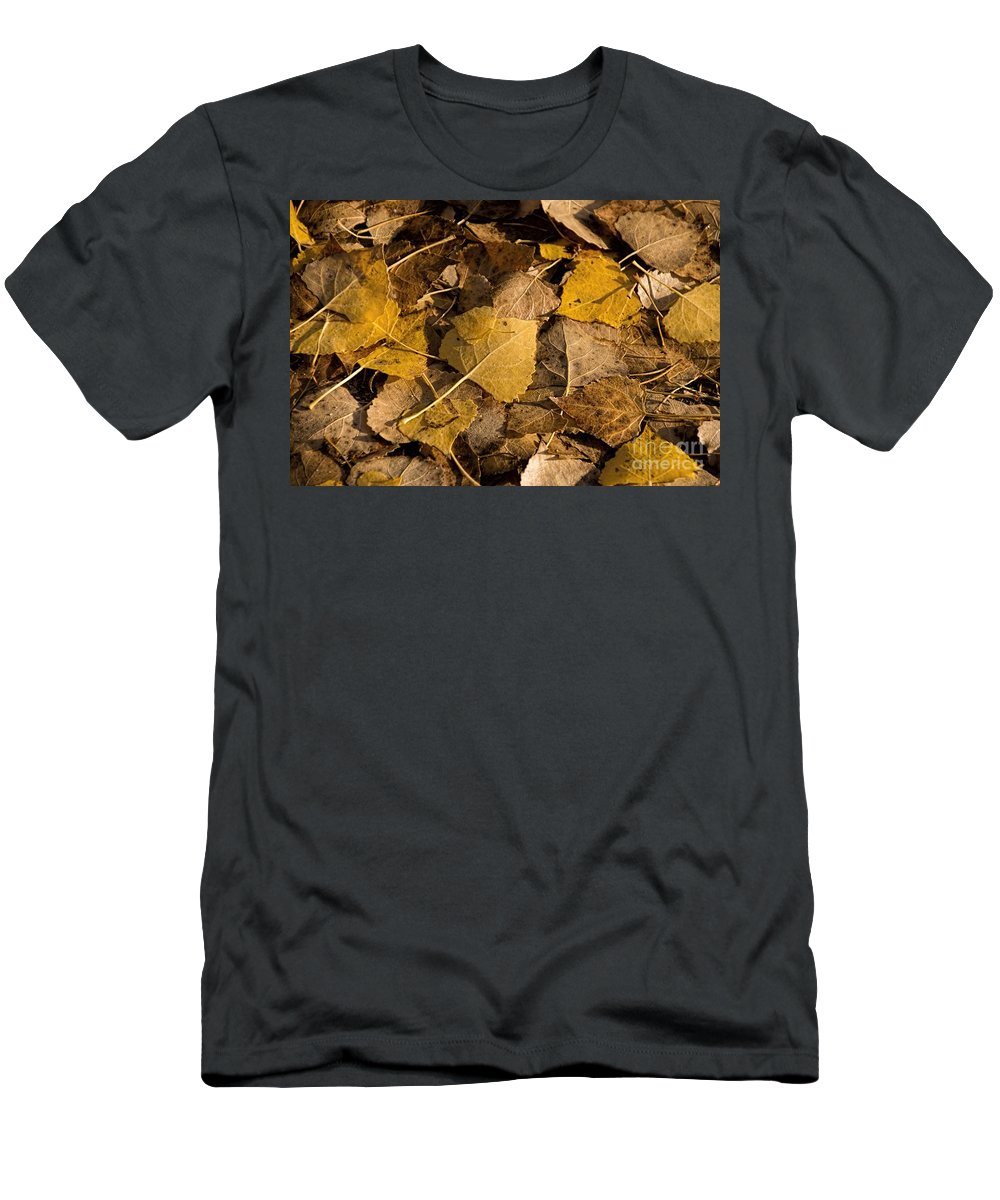 Season Men's T-Shirt (Athletic Fit) featuring the photograph Fall by Peggy Hughes