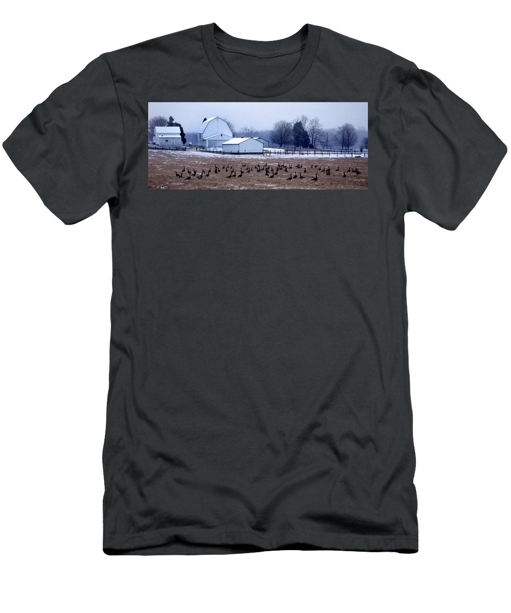 Geese Men's T-Shirt (Athletic Fit) featuring the photograph Farmer's Christmas by Skip Willits