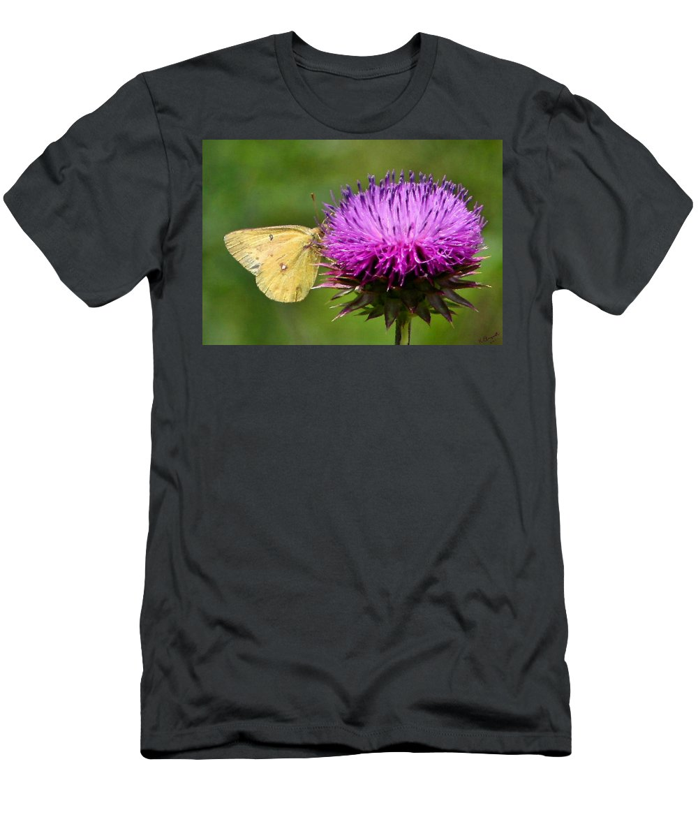 Sulfur Butterfly Men's T-Shirt (Athletic Fit) featuring the photograph Feeding On Thistle by Kristin Elmquist