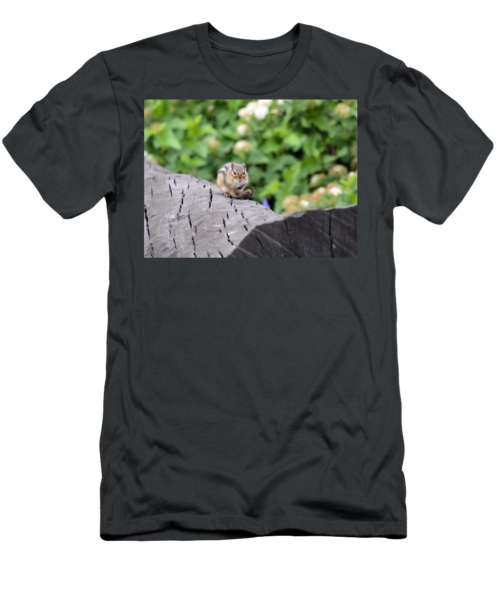 Chipmunk Men's T-Shirt (Athletic Fit) featuring the photograph Feeling Chipper by Bonfire Photography