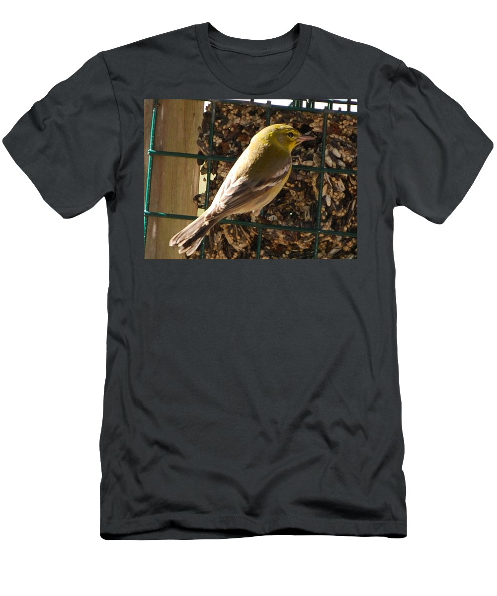 Feeding At My Bird Cake Men's T-Shirt (Athletic Fit) featuring the photograph Finch by Robert Floyd