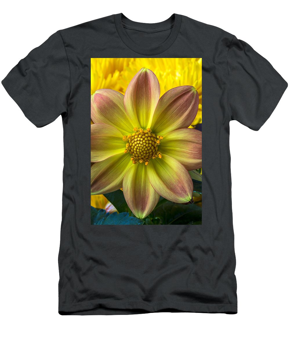 Fireworks Dahlia Men's T-Shirt (Athletic Fit) featuring the photograph Fireworks Dahlia by Garry Gay