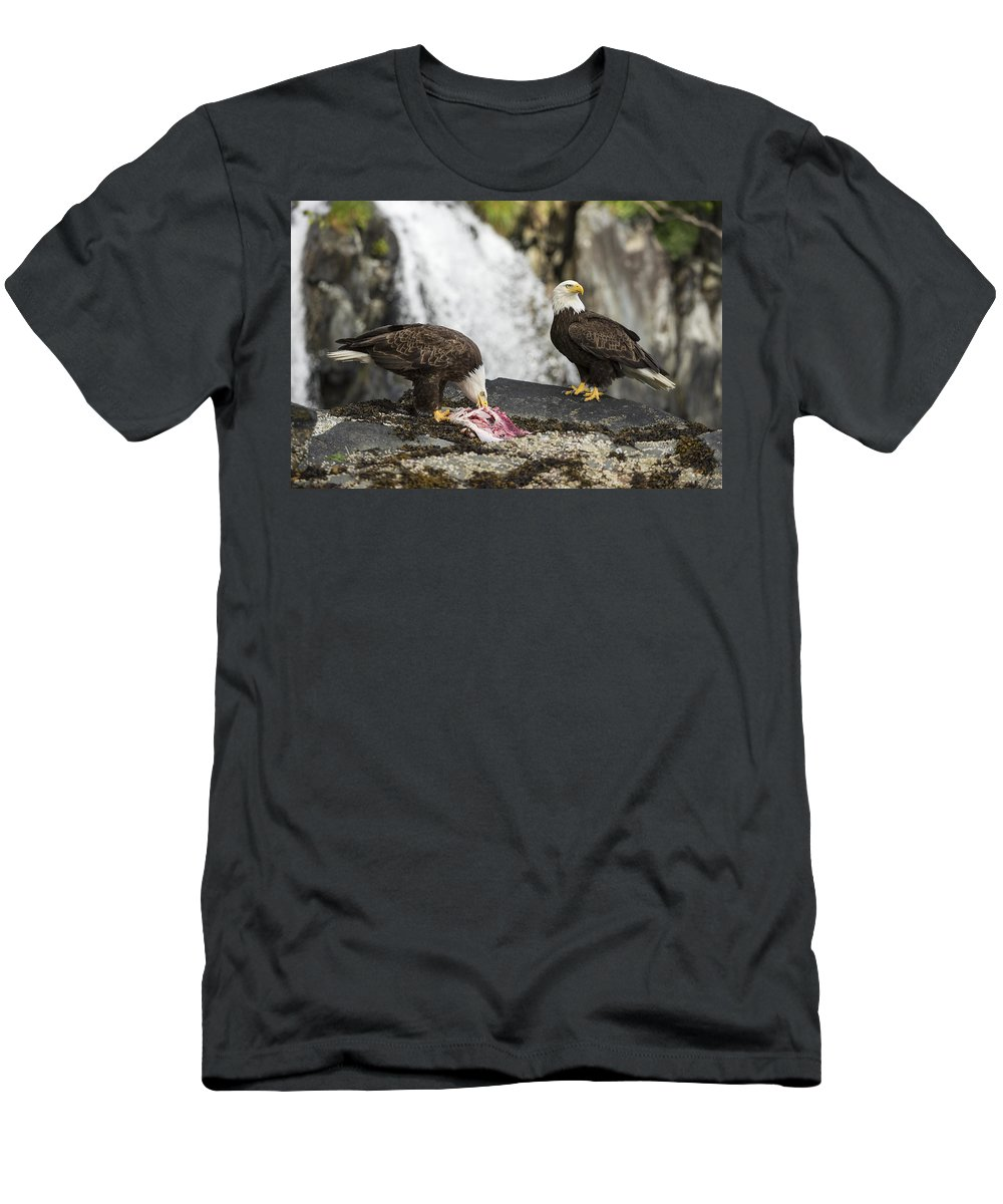Eagle Men's T-Shirt (Athletic Fit) featuring the photograph Fish Is Life by Ted Raynor
