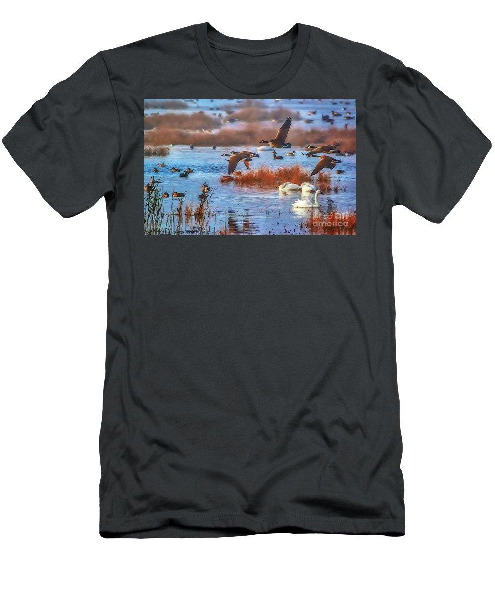 Lake Men's T-Shirt (Athletic Fit) featuring the photograph Five Canadians by Scott Hervieux