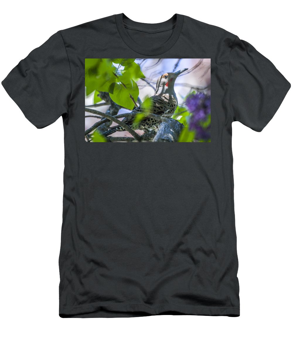 Wildlife Men's T-Shirt (Athletic Fit) featuring the photograph Flicker In The Lilacs by Albert Seger