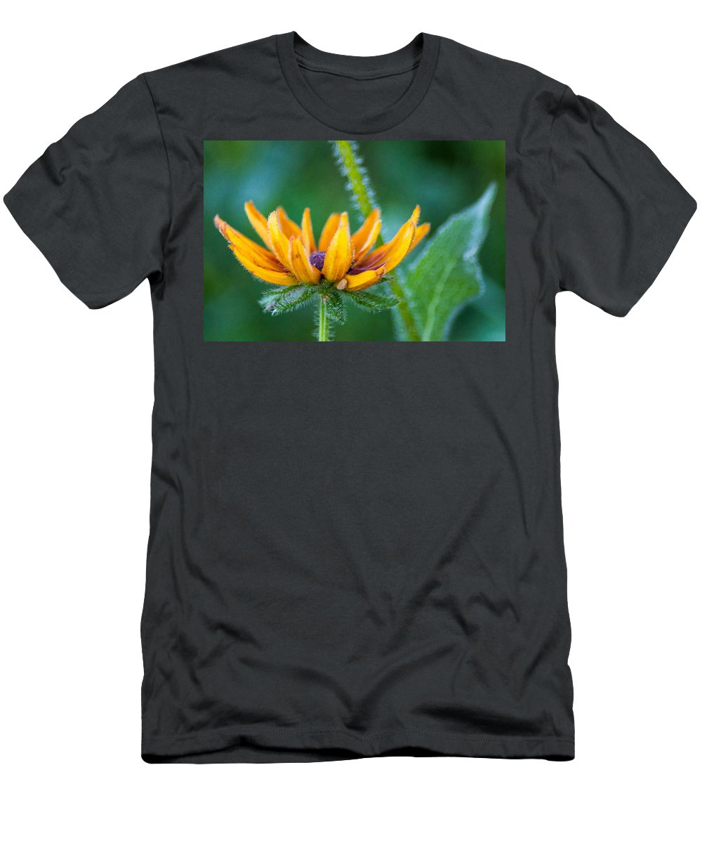 Wildflower Men's T-Shirt (Athletic Fit) featuring the photograph Floral Fuzz by Bill Pevlor