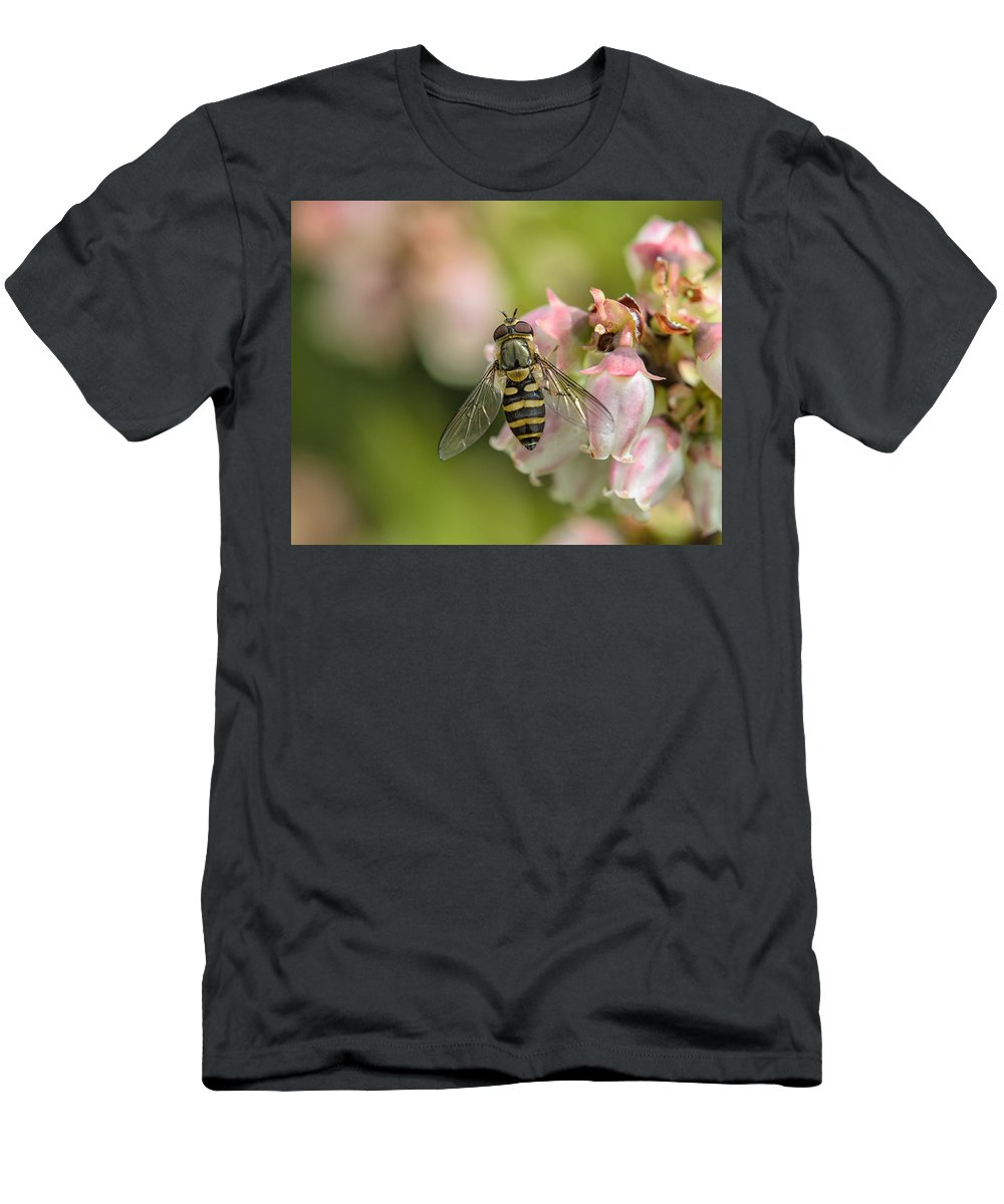 Flowerfly Men's T-Shirt (Athletic Fit) featuring the photograph Flowerfly Pollinating Blueberry Buds by Susan Capuano